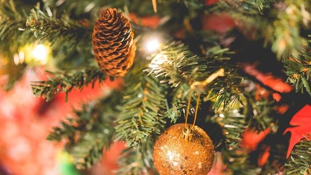 ¿Cuál es el significado de la Navidad y estás realmente adorando al Señor Jesús?