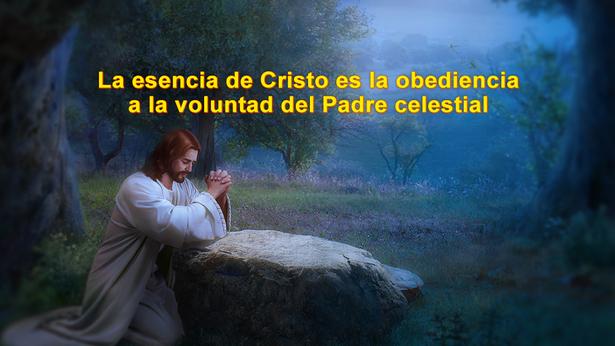 La esencia de Cristo es la obediencia a la voluntad del Padre celestial